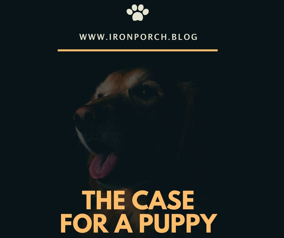 The case for a puppy