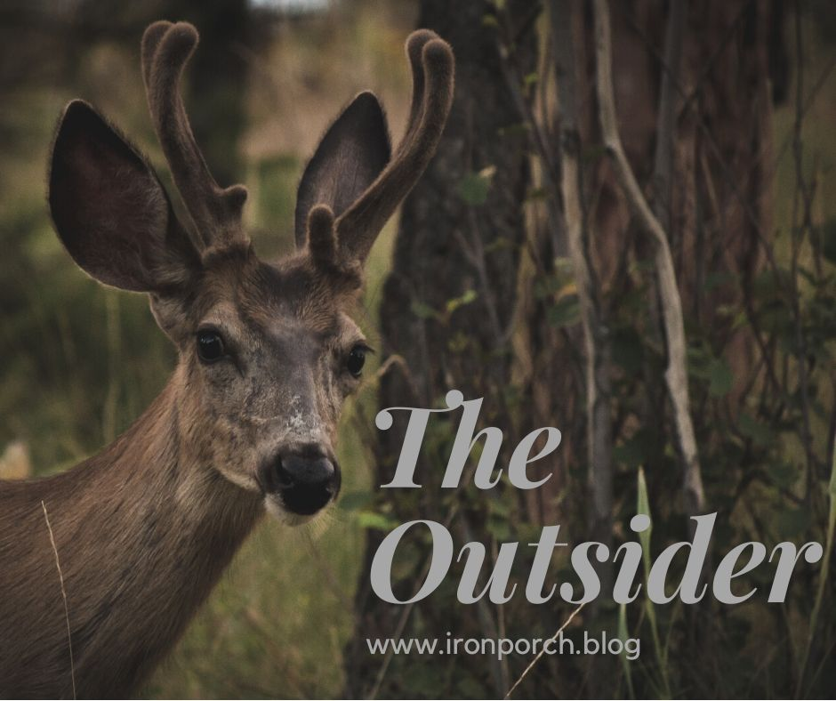 The Outsider copy