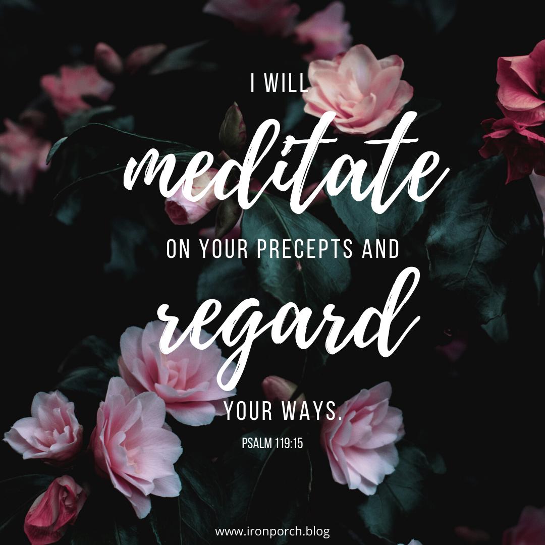 I will meditate (used)
