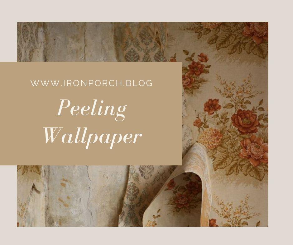 Peeling Wallpaper copy
