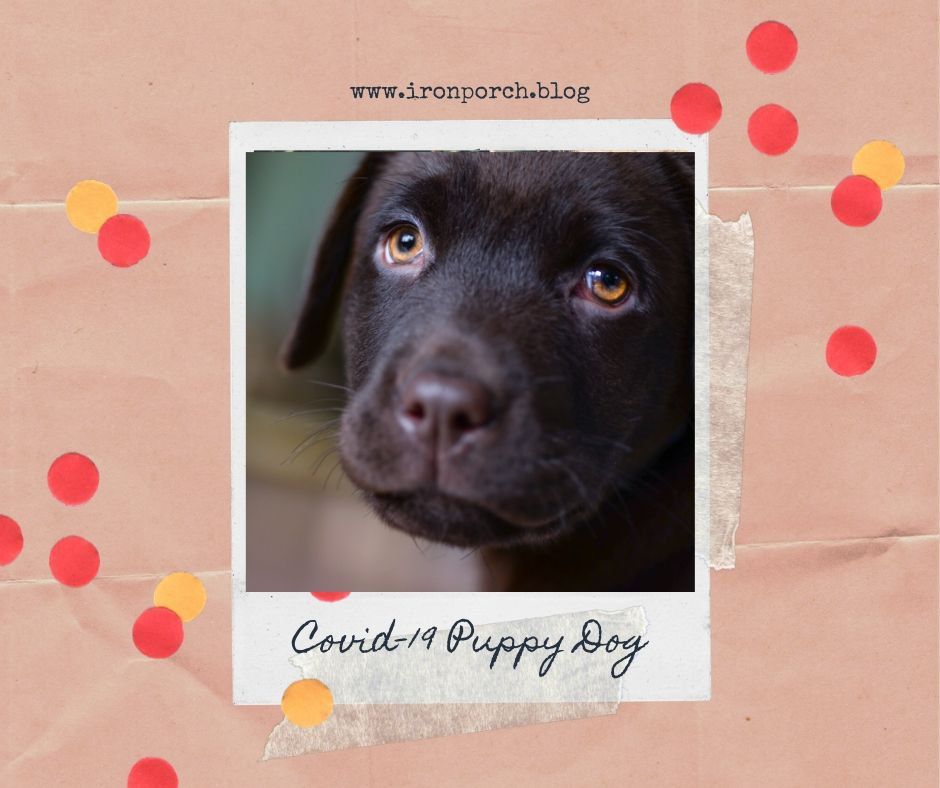 Covid-19 Puppy Dog copy