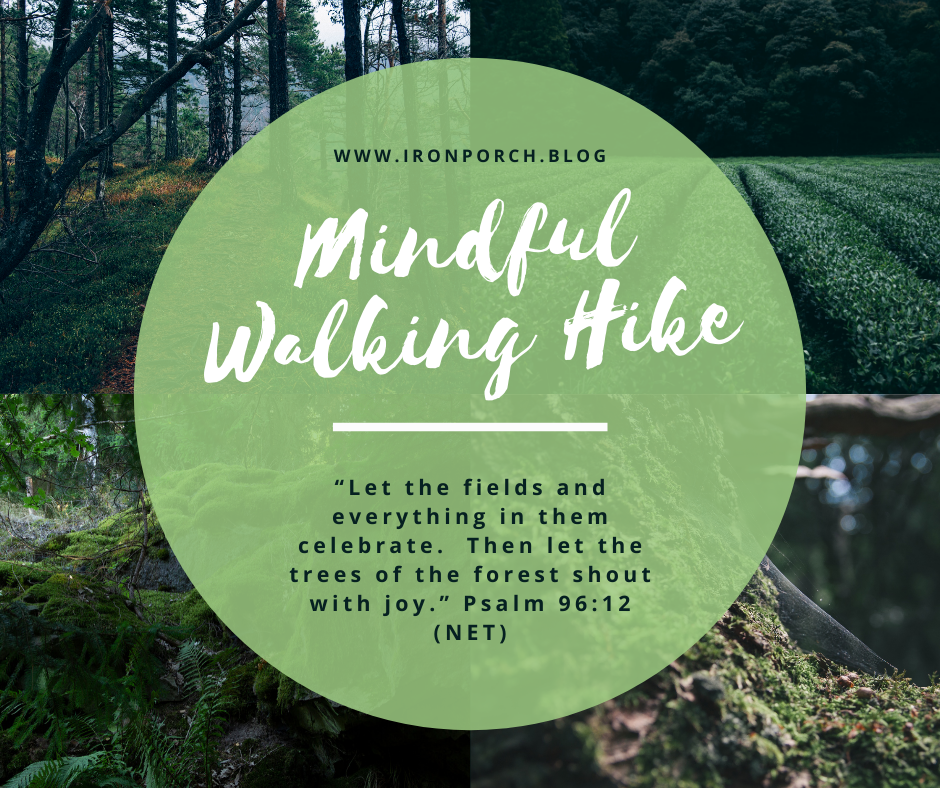 Mindful Walking Hike copy