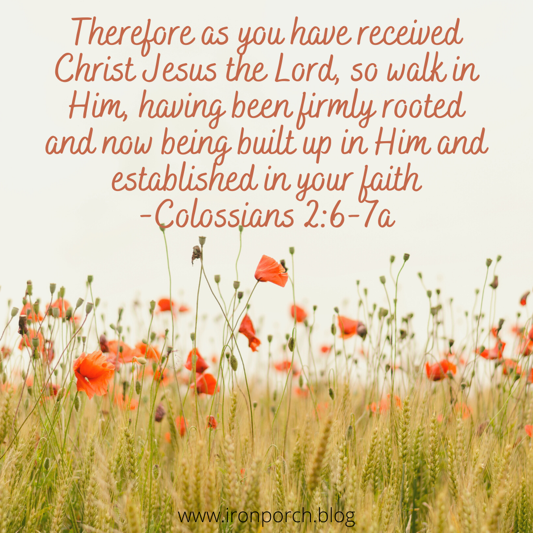 Therefore as you have received Christ Jesus the Lord, so walk in Him, having been firmly rooted and now being built up in Him and established in your faith -Colossians 2_6-7a